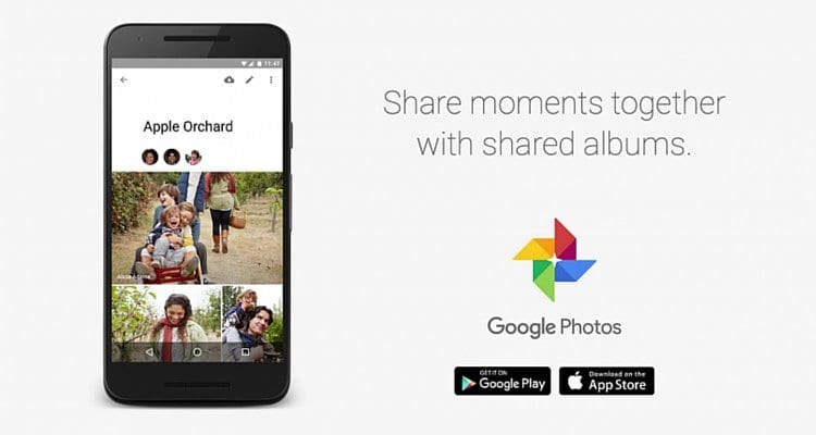 Google photos shared albums_mini