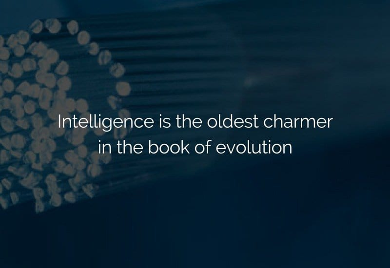 intelligence is the oldest