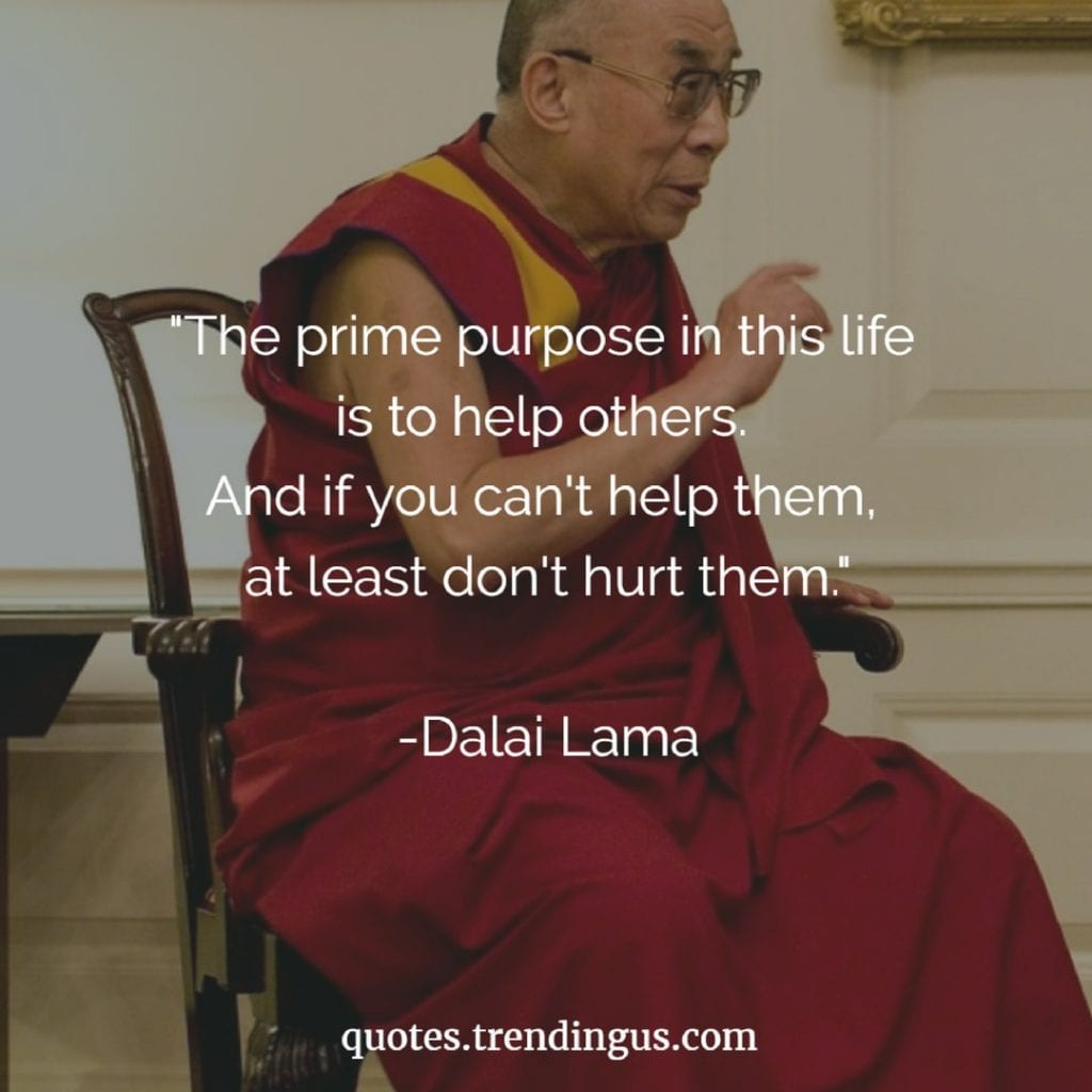 """The prime purpose in this life is to help others. And if you can't help them, at least don't hurt them."" -Dalai Lama Quotes"
