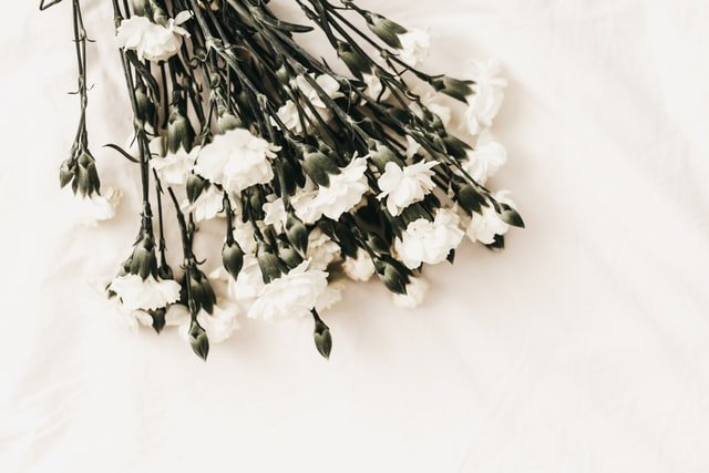Flower on white background- funeral-dies- card- what to say to deceased person's family