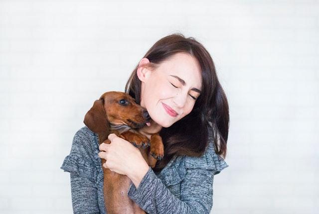 Adopt Pet Dog
