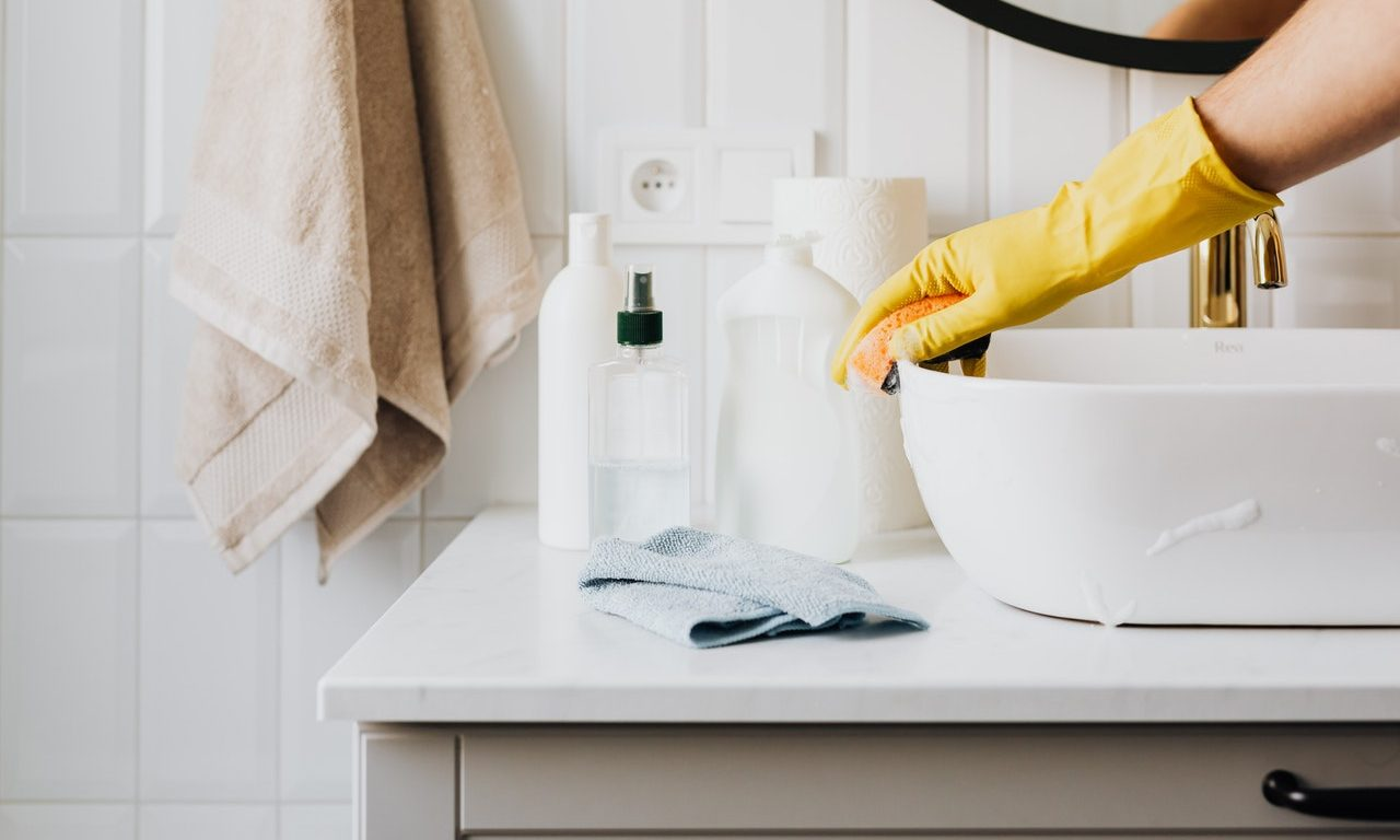 Ways To Prevent Or Stop Pest Infestation