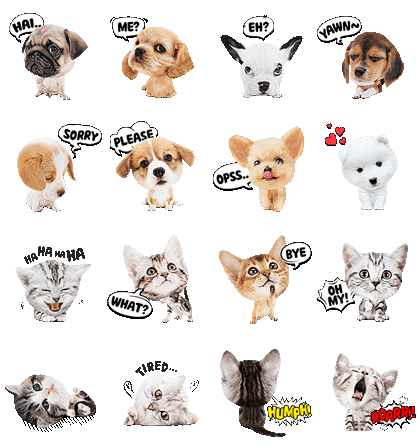 Trending WhatsApp Stickers For Pets