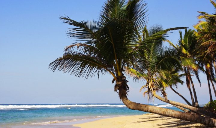 Punta Cana Vacation Tips For A Dream Getaway